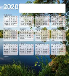 hh_hiirimatto_2020